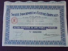 INDOCHINE - INDOCHINISE DES CULTURES TROPICALES - ACTION PRIVILEGIEE DE 100 FRS - PARIS 1930 - Shareholdings