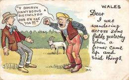R134327 Wales. A Dihiryn Anwybodus. Valentines Series. 1907 - Cartes Postales