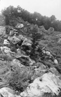 77 - Marlotte - Reste Du Long Rocher - Autres Communes