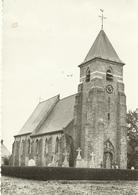 Hoeke Kerk  (1175) - Damme