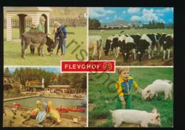 Flevohof [AA41 0.344 - Netherlands