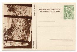 10 DINARA GREEN, AROUND 1956, KRUSEVO, MACEDONIA, YUGOSLAVIA, POSTAL STATIONERY, NOT USED - Macedonia