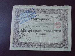 RUSSIE - STE MINIERE INDUSTRIELLE DE ROUTCHENKO - ACTION DE 500 FRS - BRUXELLES 1897 - Actions & Titres