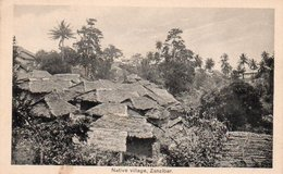 93Maj   Tanzanie Zanzibar Native Village - Tanzania