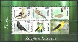Kosovo Stamps 2018. Fauna: Birds. Falco, Upupa, Sturnus, Oriolus. Souvenir Sheet MNH - Kosovo