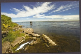 Iceland / Island - Fisherman, Salmon Fishing In West Ranga, Fish, Official Iceland Post Postcard - Islande