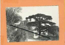 CPSM  - Ma Banlieue - 17 - Montmorency - (S.-et-O.) - Le Pavillon De La Médecine - Montmorency