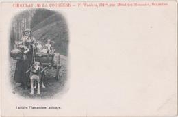 LAITIERE FLAMANDE ET ATTELAGE DE CHIENS - CHOCOLAT DE LA COURONNE - België