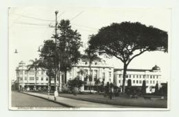 RIBEIRAO PRETO - BRASILE VIAGGIATA 1931 FP - São Paulo