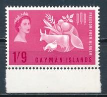 °°° CAYMAN ISLANDS - Y&T N° - 1963 MNH °°° - Cayman (Isole)