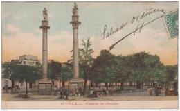 SEVILLA ALAMEDA DE HERCULES PRECURSEUR 1903 TBE - Sevilla
