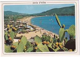 Isola D'Elba : Lacona (Capoliveri) - Livorno