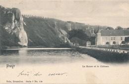 CPA - Belgique - Freyr - La Meuse Et Le Château - Dinant