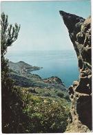 Isola D'Elba : S. Andrea - Livorno