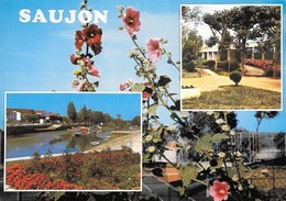17 Saujon Divers Aspects (2 Scans) - Saujon