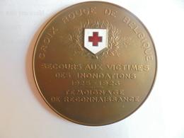 CROIX ROUGE De BELGIQUE-INONDATIONS 1925-1926 Par DEVREESE-97 Grammes-70 Mm - Professionnels / De Société