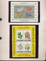 MALAWI  4 STAMPS  + 2 BLOC'S  NEW NOUVEAU NIEUW  2 SCANS - Malawi (1964-...)