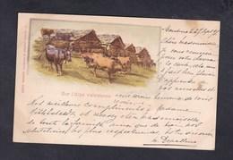 Suisse VS Sur L' Alpe Valaisanne ( Troupeau Vaches Au Verso Cachet Pension Depallens Montreux Comptoir De Phototypie) - VS Valais