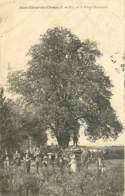 63 , ST ETIENNE DES CHAMPS , L'arbre Chabeteix , * 404 23 - Autres Communes