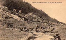La Roer Et La Ligne De Chemin De Fer Près De Sourbrodt (train) - Waimes - Weismes