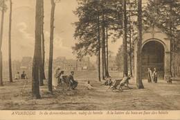 CPA - Belgique - Averbode - A La Lisière Du Bois En Face Des Hôtels - Belgique