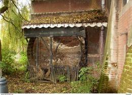 HEULE Bij Kortrijk (W.-Vl.) - Molen/moulin - De Unieke Hondenmolen Van Het Hof Van Heule In 2010 Voor Demontage - Kortrijk