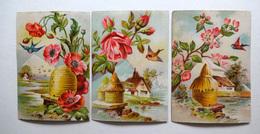 3 CHROMOS LITHOGRAPHIES GAUFRÉES  .... FORMAT..    .11.5 / 8 Cm...    ABEILLES ..RUCHES...COQUELICOTS..FLEURS ..OISEAUX - Vieux Papiers