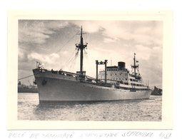 """Photo Cargo""""la Ville De Tamatave"""" à Tamatave En 1951. - Bateaux"""