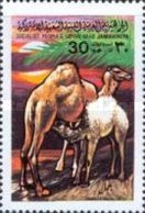 USED STAMP Libya - Animals  -1979 - Libye