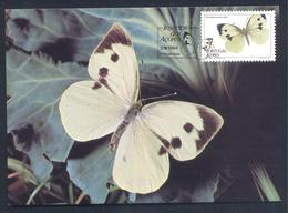 Portugal Azores 1984: Etnomology Insects Butterfly Schmetterling Mariposa Papillon Farfalla - Schmetterlinge