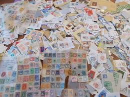 Lot N° 596  MONDE Un Vrac De Timbres Sur Fragments ( Un Kilos ) - Postzegels