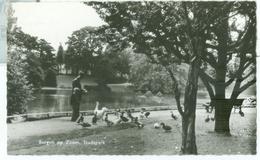 Bergen Op Zoom 1961; Stadspark - Gelopen. (Uitgever?) Lees Info! - Bergen Op Zoom