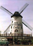 AARSCHOT (Vlaams-Brabant) - Molen/moulin - Historische Opname Van Café Witte Molen In 1957, Met Oldtimer - Aarschot