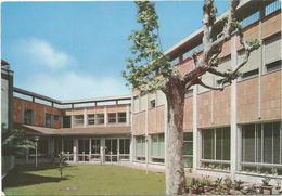 W2448 Roma - San Giuseppe Al Trionfale - La Nuova Scuola Materna / Non Viaggiata - Enseignement, Ecoles Et Universités