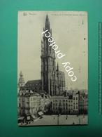 Anvers Antwerpen Cathedrale - Antwerpen