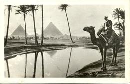 Cairo (Egypt) The Pyramids Of Giza And The Chamel - Piramidi