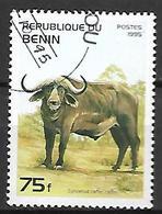 BENIN    -     1995 .  Buffle . Oblitéré - Bénin – Dahomey (1960-...)