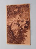 SUCHANEK Stastné Mladi > Identifikovat ( Edit.: VKKV 3056 ) 1920 Levoca ( See Photo For Detail ) ! - Tsjechië