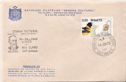 Brazil Stamp On Special Cover - Brasile