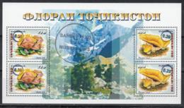 Tajikistan Tadschikistan MNH** 2018 Mushroom Block With Surgarge Type I  Mi 804-805 Bl.80 II - Tadschikistan