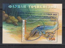 Tajikistan Tadschikistan MNH** 2018 Fish Block With Surgarge   Mi 806 Bl.81 - Tadschikistan