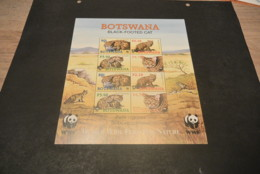 GR114- Sheet MNH Botswana 2005 - Black-footed Cat   - Non-normalised Shipment - W.W.F.