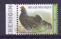 Belgie - 2017 - OBP - ** Korhoen ** - Bélgica