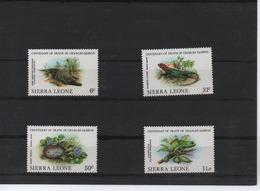 SIERRA LEONA/REPTILES 698/701 (4 V) 1982 MICHEL - Sierra Leona (1961-...)