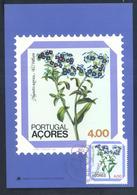 Portugal Azores 1982 Maximum Card: Flora Flowers Blume; Myosotis Azorica, Azorean Mouse-ear - Pflanzen Und Botanik