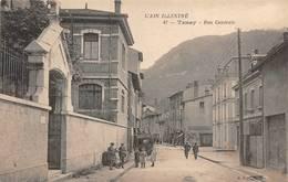 Tenay Canton Saint Rambert - France