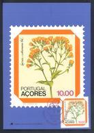 Portugal Azores 1982 Maximum Card: Flora Flowers Blume; Lettuce (Lactuca Watsoniana) - Pflanzen Und Botanik