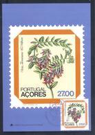 Portugal Azores 1982 Maximum Card: Flora Flowers Blume; Vicia Dennesiana - Pflanzen Und Botanik