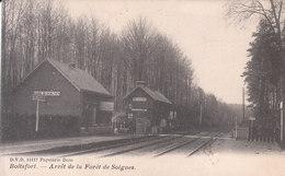 Boitsfort - Arrêt De La Forêt De Soignes - Watermaal-Bosvoorde - Watermael-Boitsfort
