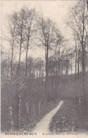 Montroeul Au Bois, Route Du Bois De La Vierge (pk58654) - Leuze-en-Hainaut
